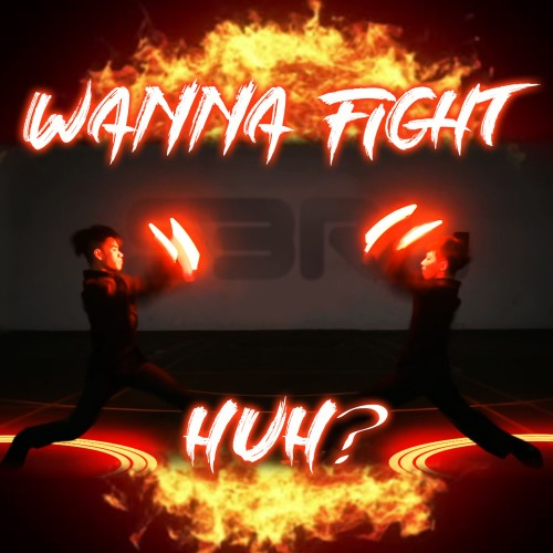 Wanna Fight Huh - S3RL